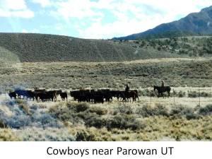 cowboys utah