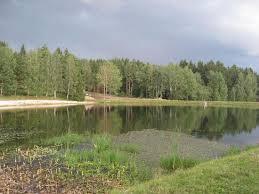 gravel pond